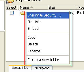 4shared file sharing options