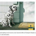 Pedigree Weight Loss for Dogs