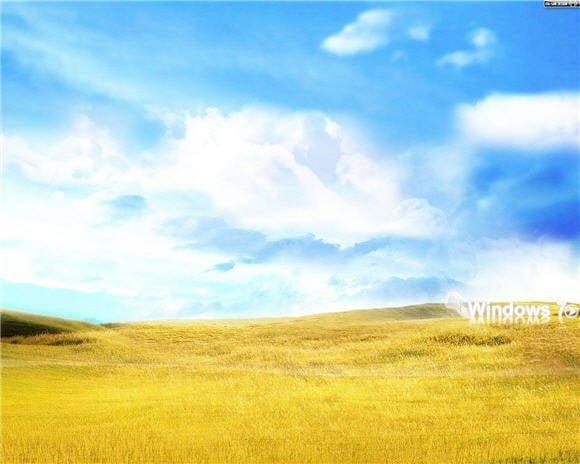 Windows 7 Golden Field Wallpaper