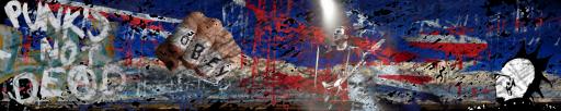 Rock Wallpaper : Punk is not dead